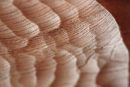 wood carving: Wood carving of flea mark Stock Photo