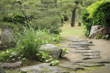 stepping stone: Japanese-style garden stepping stone