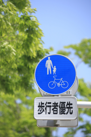 labeling: Labeling of pedestrian priority road