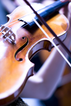 instrumentalist: Violin