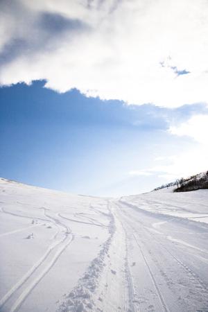 snowfield: Snowfield.