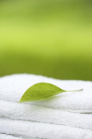 cleansed: Leaf