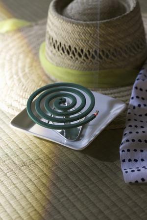 bobina: Mosquito bobina de Foto de archivo