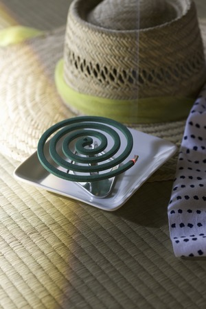 coil: Mosquito coil Stock Photo