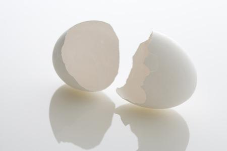 sureness: Egg shells Stock Photo