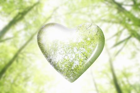 favour: Eco image