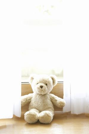 livelihood: Teddy bear