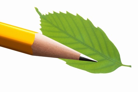 writing utensil: Pencil and leaves