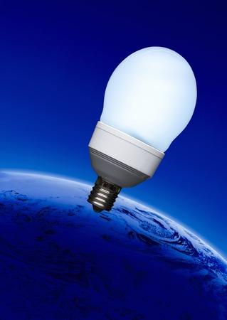 bioluminescent: Ecology images