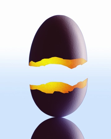 crazing: Egg shells Stock Photo