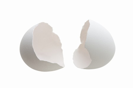Egg shells Stock Photo