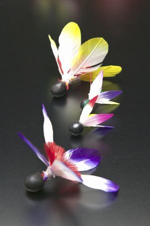 battledore: Feather of battledore Stock Photo