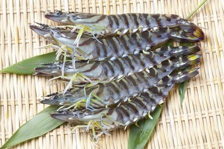 stuff fish: Tiger prawn Stock Photo