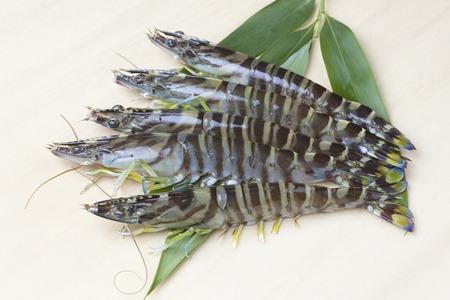 expensive food: Tiger prawn Stock Photo