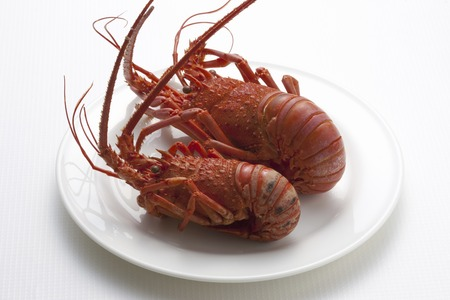 expensive food: Rock lobster
