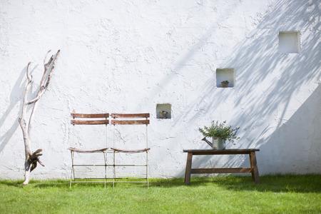 plantas ornamentales y sillas colocadas en el jardín