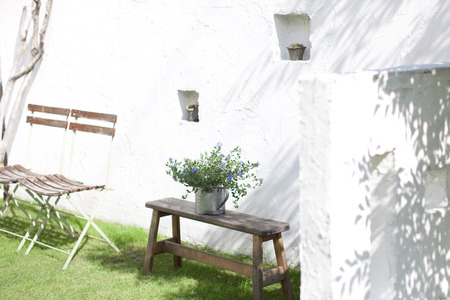 slowly: Ornamental plants and chairs placed in the garden