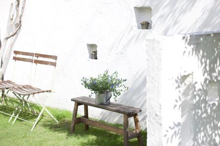 slowly: plantas ornamentales y sillas colocadas en el jardín