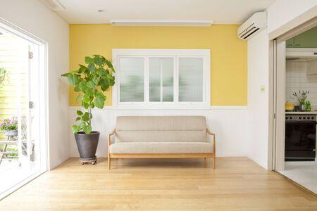 Sofa and houseplants Stock Photo