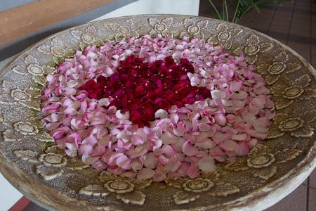 esthetic: Rose petals
