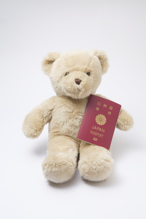 foreign country: Teddy bear with a passport