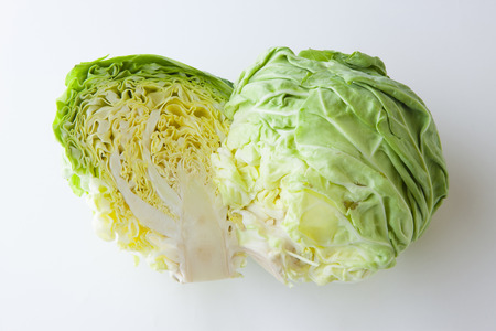 salubrious: Cabbage Stock Photo