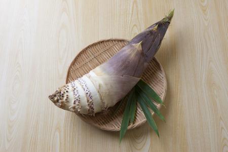 shoots: Picked fresh bamboo shoots