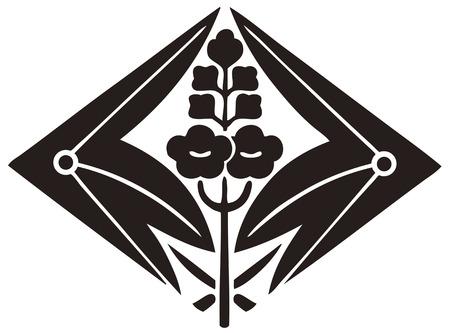 trifolia: Hugging Sawakatahishi fired Sagittaria trifolia sebum