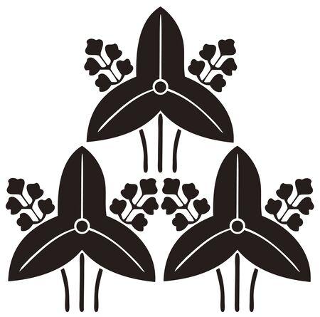 prime: Three prime Sawakata estimate Sagittaria trifolia
