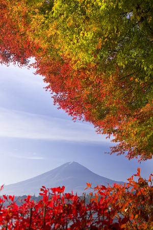 kawaguchi: Fall foliage and Mt. Fuji Stock Photo