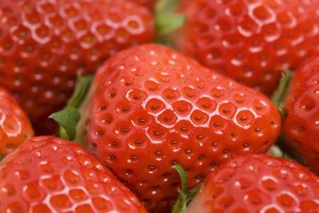 saga: Strawberry