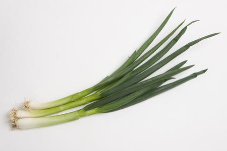 Kujo green onion Stock Photo