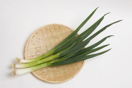 green onion: Kujo green onion Stock Photo