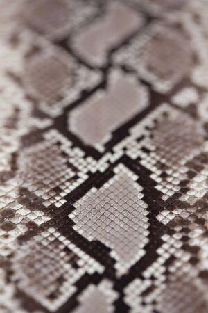 ヘビ革 写真素材