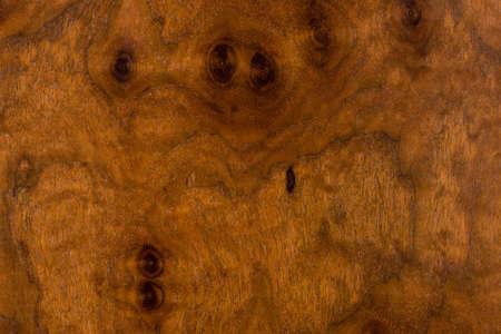 plate: Plate of Claro walnut Stock Photo