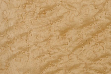 Birdseye maple leaf Birdseye maple, imported timber Stock Photo