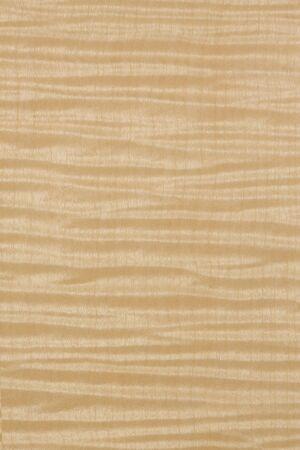 sicomoro: Piatto di Sycamore