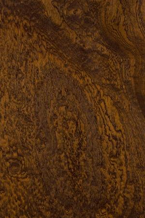 plate: Plate of mahogany