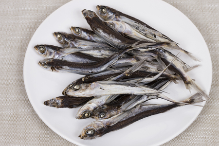 barbs: Anchovy of flying fish