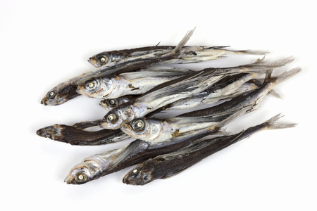 chins: Anchovy of flying fish