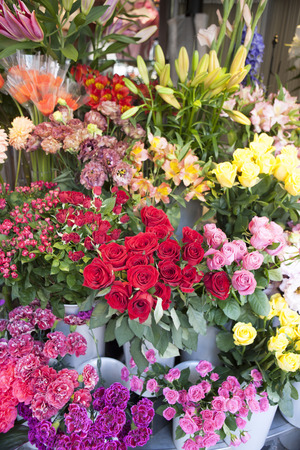 over the counter: Flower shop