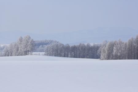 freezing: earth to freezing