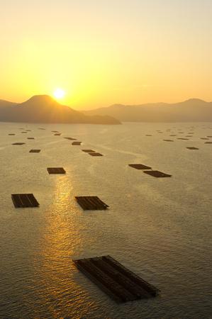 raft: Farming raft of morning Jing