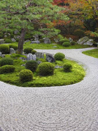 manche: Manche Institute garden