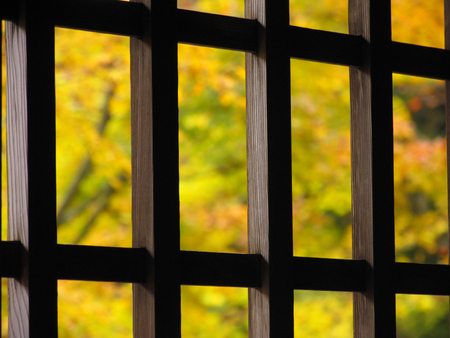 lattice window: Foliage and lattice window