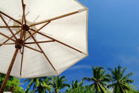 parasol: Poolside parasol