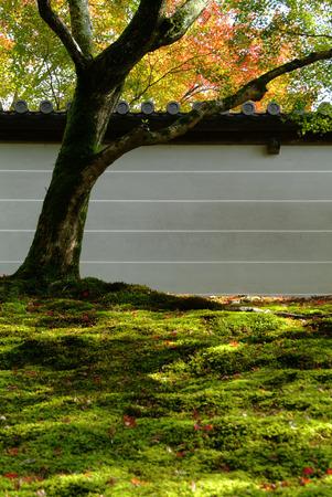 manche: Manche Institute fence