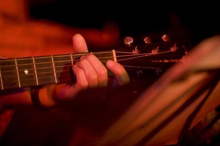 instrumentalist: Acoustic guitar