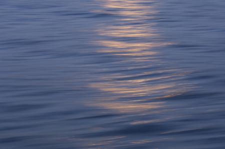 fluctuation: Sea