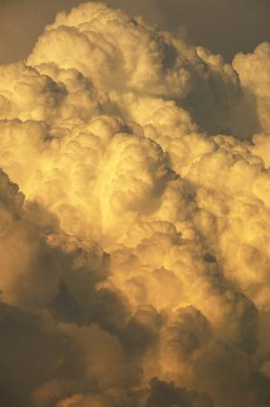 cumulonimbus: Cumulonimbus that stain sunset